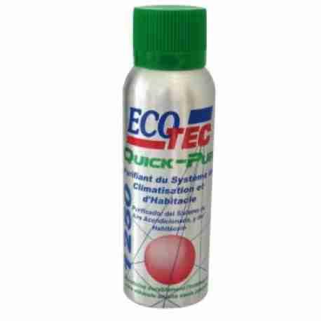 ECOTEC QUICK-PUR 1250
